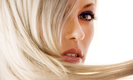 Haircut and Style with Option for  Highlights, or Three Haircuts and Styles at Lamar Hair Studio (Up to 58% Off)