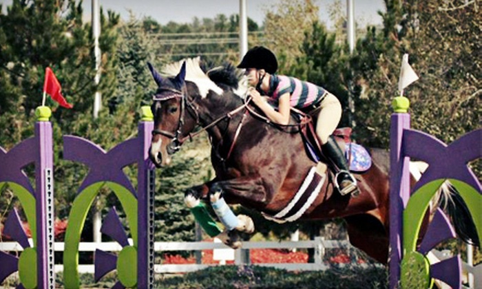 Millbrook Equestrian - Louviers: One, Two, or Three Children's Instructional Horse-Care Sessions at Millbrook Equestrian (Up to 56% Off)