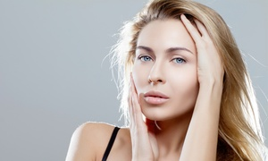 Jim Ostrosky Salon: Haircut and Style with Optional Partial or Full Highlights or Color at Jim Ostrosky Salon (Up to 62% Off)