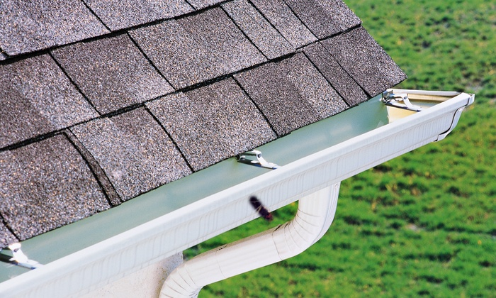 Cleanup Service - Blackwood: Gutter Cleaning for a Single Story Home or Dryer Vent Cleaning from Cleanup Service (Up to 49% Off)
