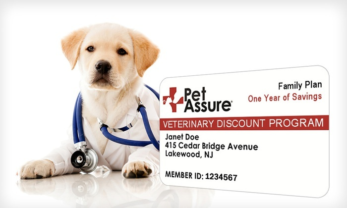 Pet Assure Corp: One-Year Single Cat, Single Dog, or Household Veterinary Discount Plan from Pet Assure (Up to 73% Off).