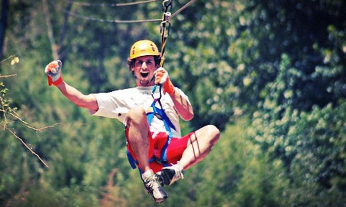 Adventure Ziplines of Branson and Xtreme Racing - Branson: Zipline Canopy Tour or Adventure Package for One or Two at Adventure Ziplines of Branson and Xtreme Racing (53% Off)