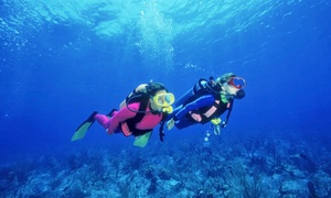 Scuba Lessons Jax: $279 for a PADI Basic Open Water Certification Course at Scuba Lessons Jax ($399 Value)