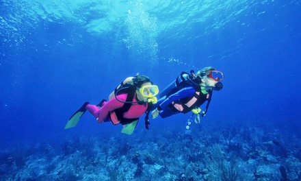 $279 for a PADI Basic Open Water Certification Course at Scuba Lessons Jax ($399 Value)