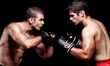 Five or Ten Classes at Boxing Academy (Up to 73% Off)