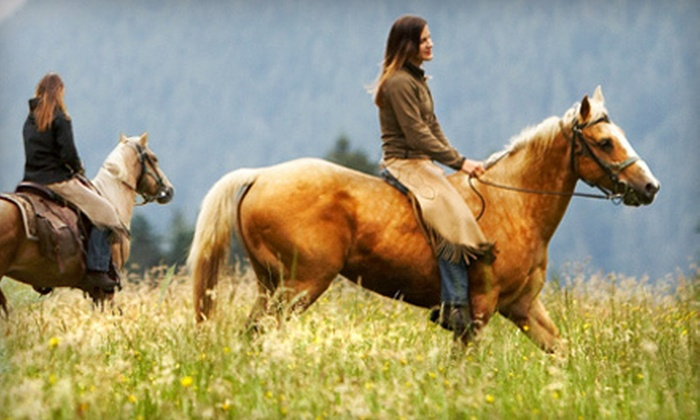 Kimberly Farms - Shaftsbury: $39 for a One-Hour Horseback Trail Ride for Two at Kimberly Farms ($84 Value)