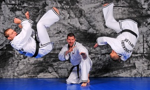 Jin Jung Kwan Hapkido-USA, Inc.: Private or Group Lessons at Jin Jung Kwan Hapkido-USA, Inc. (Up to 77% Off)