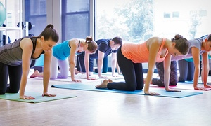 Surya Yoga: 5 or One Month of Unlimited Yoga Classes at Surya Yoga (Up to62%  Off)