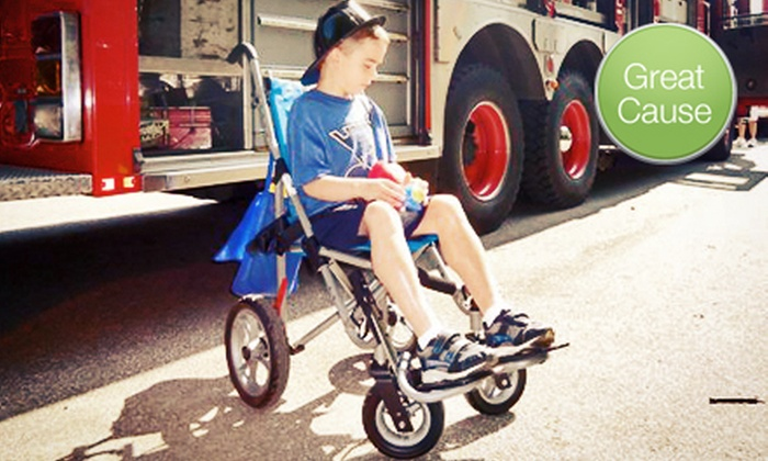 Muscular Dystrophy Association of St. Louis - Brentwood: If 60 People Donate $10, Then the Muscular Dystrophy Association Can Provide Flu Shots to 30 Kids with Muscular Dystrophy