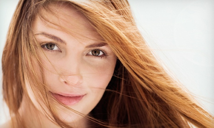 Tangie at The James Robert Salon - Temple City: Haircut and Blow-Dry with Conditioning, Color, or Highlights from Tangie at The James Robert Salon (Up to 52% Off)