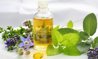 Master Herbalist Diploma Course from Online Academies (85% Off)