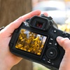 Up to 51% Off from Cole/Marr Photography Workshops