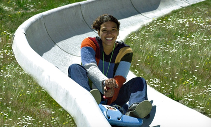 Mt. Hood Skibowl - Mount Hood: Two Rides on the Alpine Slide or Half-Day Adventure Pass for Two at Mt. Hood Skibowl (Half Off)