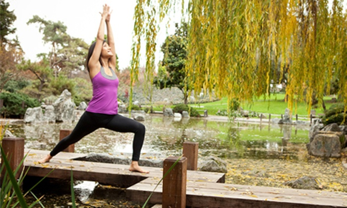 Yoga at Cindy's - Sunnyvale: 10 or 20 Drop-In Classes at Yoga at Cindy's (Up to 80% Off)