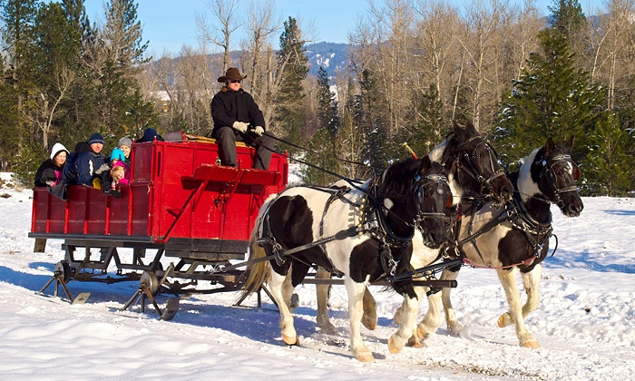 Idaho Sleigh Rides - Garden Valley: Sleigh Ride for 4 or 12 with Hot Drinks at Idaho Sleigh Rides (Up to 50% Off)