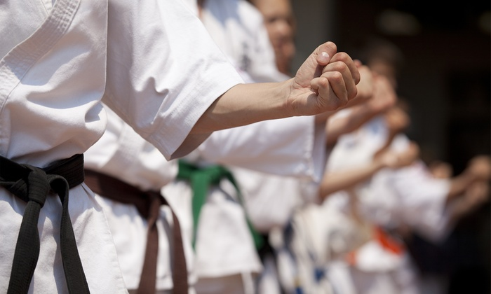 USA Wado-Ryu Karate - Laguna Niguel: One or Three Months of Karate Classes at USA Wado-Ryu Karate (Up to 72% Off)