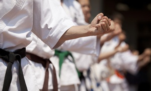 USA Wado-Ryu Karate: One or Three Months of Karate Classes at USA Wado-Ryu Karate (Up to 72% Off)