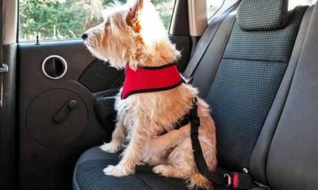 Correa ajustable de coche para mascotas Oferta en Groupon