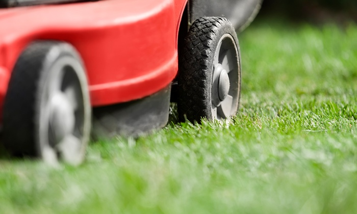 Progressive Lawn Maintenance and Snow Removal - Toronto (GTA): Lawn Care Packages from Progressive Lawn Maintenance and Snow Removal (Up to 87% Off. Two Options Available.