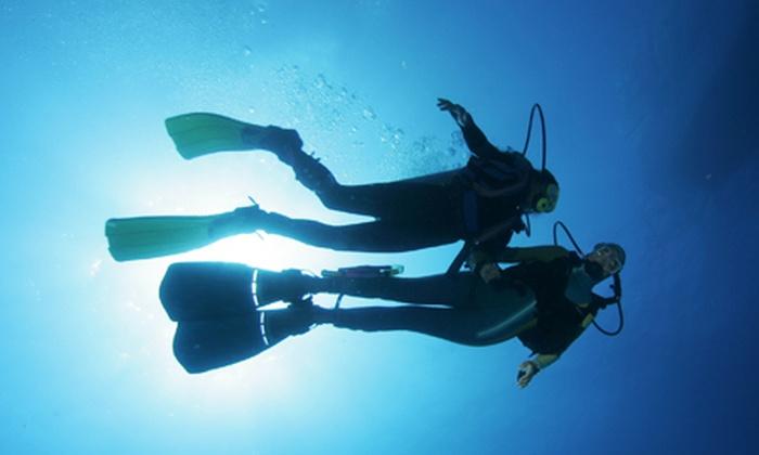 Dive Center Paradise - München: Grundtauchkurs, Freiwasserkurs oder Open Water Diver Tauchkurs im Dive Center Paradise ab 129,90 € (bis zu 52% sparen*)