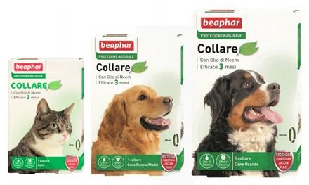 :2 collari antiparassitari Beaphar: Collare per gatto