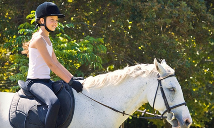 Thunder Rail Stables - Enumclaw Plateau: One or Four Private 60-Minute Horseback-Riding Lessons at Thunder Rail Stables in Enumclaw (Up to 56% Off)