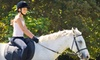 Thunder Rail Stables - Lake Morton-Berrydale: One or Four Private 60-Minute Horseback-Riding Lessons at Thunder Rail Stables in Enumclaw (Up to 56% Off)