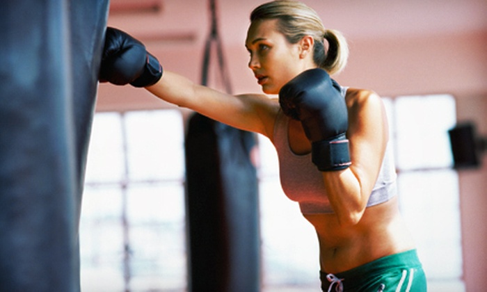 Wiseman's Martial Arts - Mt. Pearl: One Month of Kenpo Karate Classes or Ladies' Cardio-Kick-Boxing Classes at Wiseman's Martial Arts (Up to 77% Off)