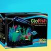 Bubbling LED Desktop Aquarium Kit or GloFish 3 Gallon Aquarium Kit