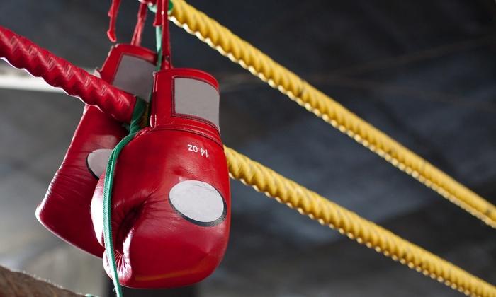 Pro Elite Boxing Gym - Greeningdon: One-Month Membership at Pro Elite Boxing Gym (76% Off)