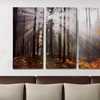 $99 for a Gallery-Wrapped Canvas Triptych