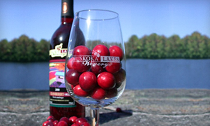 Johnston's Cranberry Marsh - Bala: C$15 for a Geocaching Wine Adventure for Two at Johnston's Cranberry Marsh (C$30 Value)