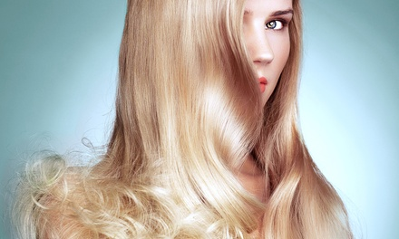 Haircut and Deep Condition with Optional Color or Partial Highlights at Stefani's Salon (Up to 55%)