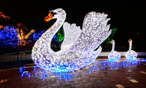 Saint Louis Zoo: Admission for Two or Four to U.S. Bank Wild Lights at Saint Louis Zoo (41% Off). Three Options Available.