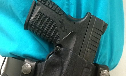$69 for a Concealed-Weapons Class at Blackwater Agency ($150 Value)