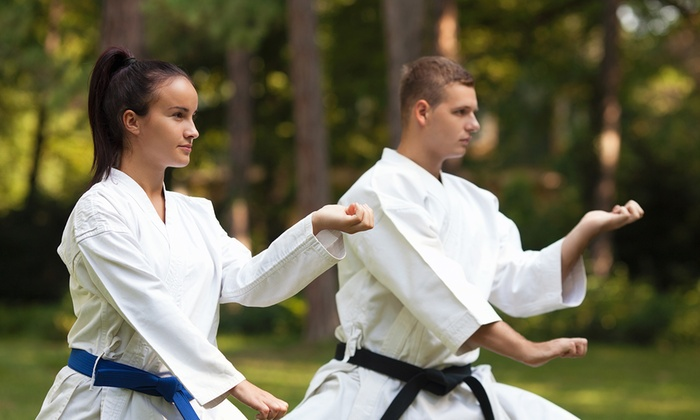 Usa Wuchi Kungfu Academy - Fremont: $39 for $135 Worth of Martial-Arts Lessons — USA Wu Chi Kung Fu Academy