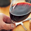 Up to 53% Off Wine Class in Woodstock