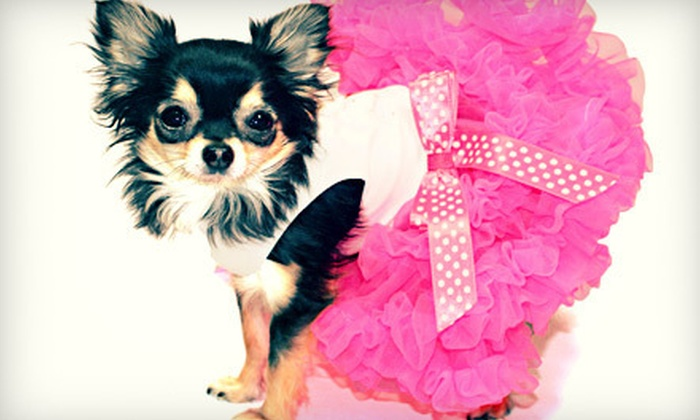 Posh Puppy Boutique: Designer Dog Clothing and Supplies from Posh Puppy Boutique (Up to 51% Off). Two Options Available.