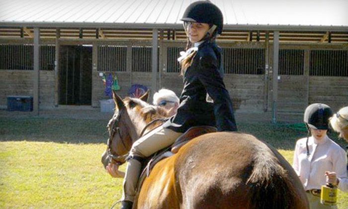 Hidden Lark Farm - Ocala: One or Two 30-Minute Private Horseback-Riding Lessons at Hidden Lark Farm (Up to 51% Off)