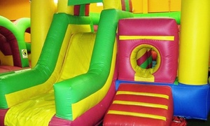 Wood Kingdom: Two or Four Open-Play Indoor Playground Sessions at Wood Kingdom in Farmingdale (Up to 55% Off)