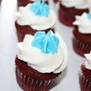 Up to 63% Off Cupcakes from So CupCakeable