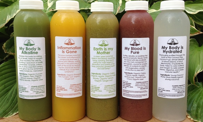 Earth's Healing Cafe - Downtown Chicago: $89 for a Three-Day Juice Cleanse at Earth's Healing Cafe ($127.50 Value)