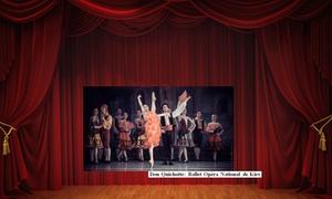 Compagnie Victor- Spect Art: Une place en catégorie 3 ou 2 pour le spectacle Don Quichotte, pour 1 ou 2 personnes dès 16,99 € au théâtre de Namur