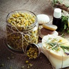 Craft Your Own Goat Milk Soap and Meet Goats on a Working Dairy Farm