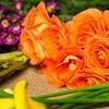 50% Off Floral Arrangements from Fresh Pond Florist