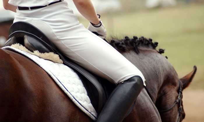 Rushlow's Arabians - Romulus: $25 for One 60-Minute Private Horseback-Riding Lesson at Rushlow's Arabians ($45 Value)