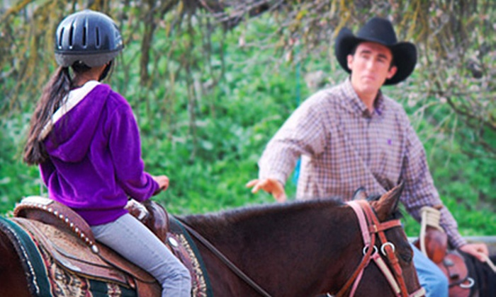 JM Performance Horse - Diablo Range: Horseback-Riding Lessons and Trail Rides at JM Performance Horse (Up to 64% Off). Four Options Available.