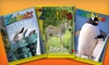 """""""Zoobooks"""" Magazine: $15 for a One-Year Subscription to """"Zoobooks,"""" """"Zoobies,"""" or """"Zootles"""" Magazines with Posters and Stickers ($29.95 Value)"""