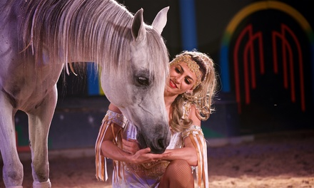 The Dancing Horses Show with Exotic Bird Show and Backstage Tour Through May 31