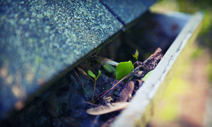 Quality Gutter & Pressure Cleaning - Gwinnett County: $69 for Gutter Cleaning for Home of Up to 3,500 Square Feet from Quality Gutter & Pressure Cleaning ($250 Value)